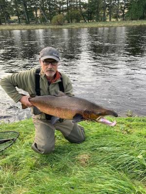 Dee salmon