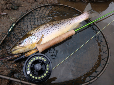 Barrio LA56 Fly Reel and GT90 Fly Line