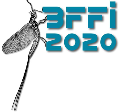 British Fly Fair International 2020