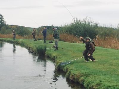 Fishing Comp