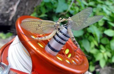 Fly reel