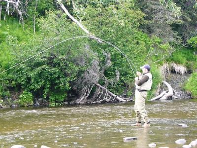Anchor river Alaska