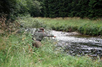 The River Don at Semeil