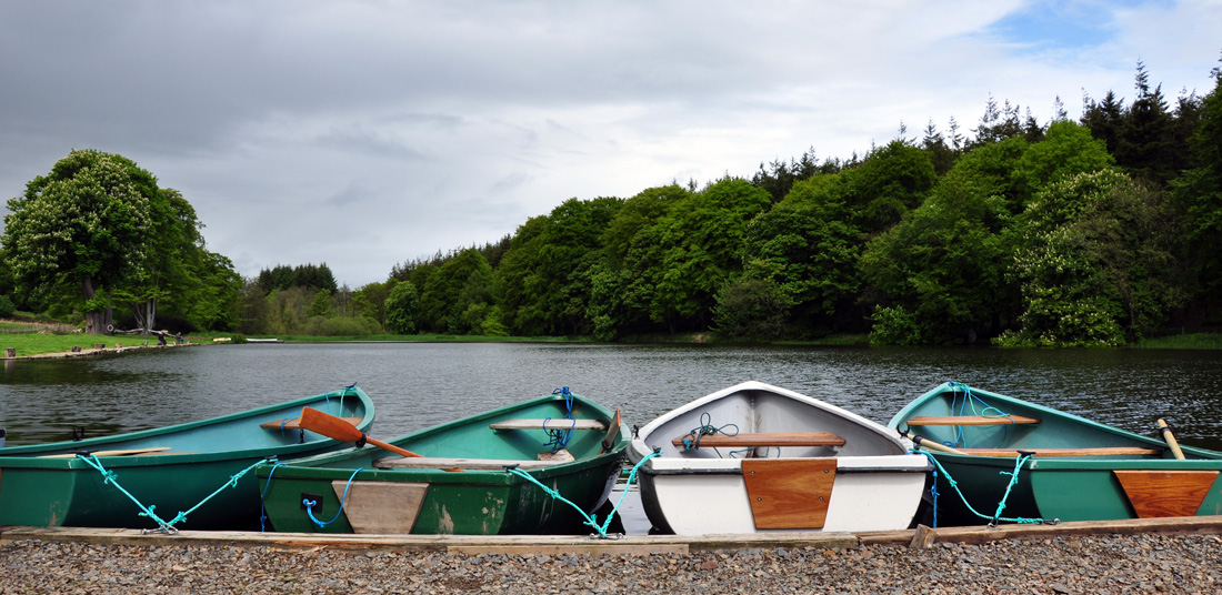 Delgatie Castle Trout Fishery
