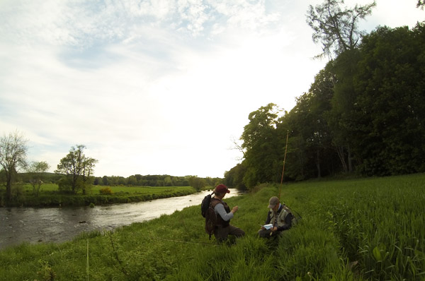 River Don Evening Fishing