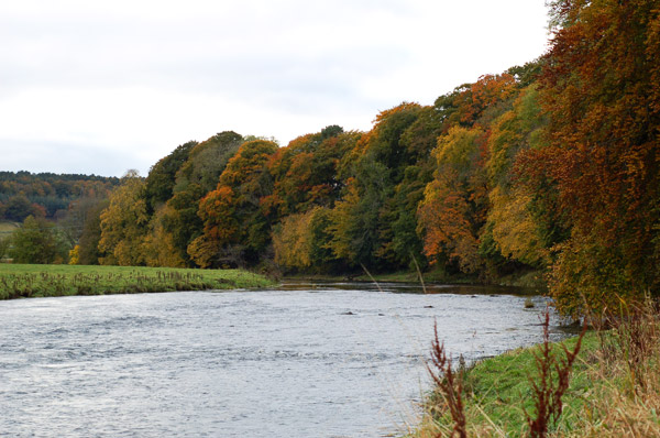 The Aberdeenshire River Don