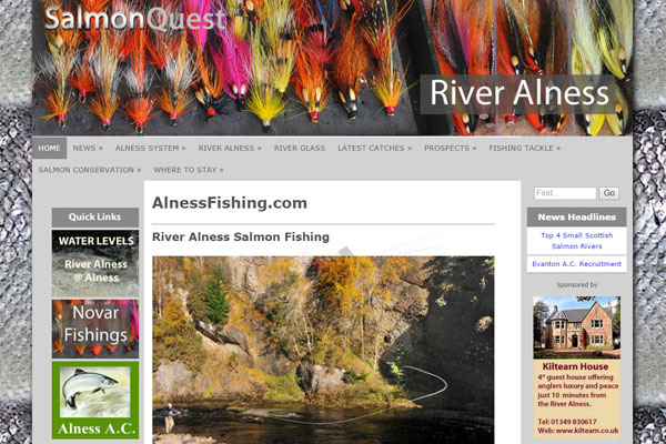 Screenshot of the River Alness website